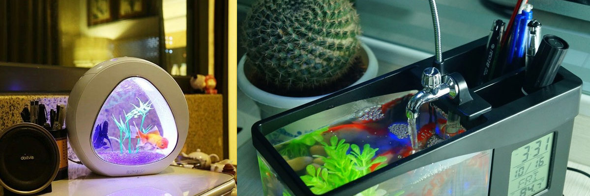 ขาย-สินค้า-ออนไลน์---ตู้ปลาอเนกประสงค์-(Desktop-Aquarium)